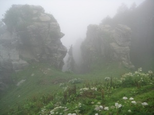 There is nothing more magical than seeing the fog lifting and unveiling the raw beauty of the Himalayas!