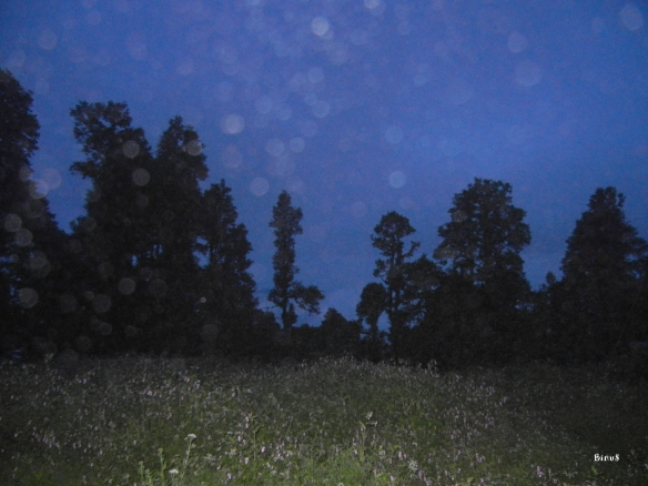 The sun had set and instead of the moon and stars we got rain clouds...  After a while I quit wiping my camera lens.