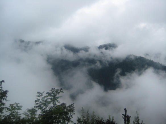 The view more than made up for the not so great beer we had bought in Solan.